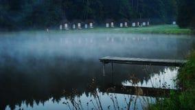 Brume au-dessus d'un étang dans le camp Image libre de droits