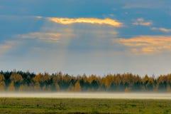 Brume d'automne et le rayon du soleil Images libres de droits