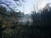 Brume d'hiver Photo libre de droits