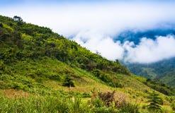 Brume dans les montagnes. Photos stock