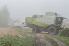 Brume de champ de maïs et jour pluvieux Image stock