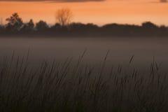 Brume de coucher du soleil Photo stock