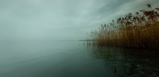 Brume de lac Balaton Photos libres de droits