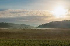 Brume de lever de soleil et de matin au-dessus de pâturage et de collines Photo stock