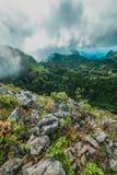 Brume de matin à la forêt tropicale tropicale Photographie stock libre de droits