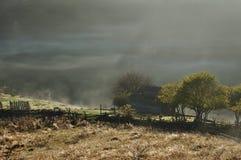 Brume de matin Photos stock
