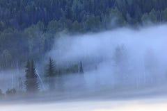 Brume de matin Photo stock