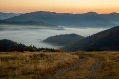 Brume de matin dans la région boisée de montagne Photo stock