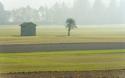 Brume de matin dans une vallée de montagne avec des champs et une vieille grange en bois et arbres avec la forêt en brouillard de images stock