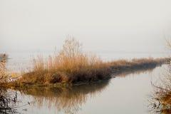 Brume de matin plus de, lac Image libre de droits