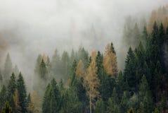 Brume de montagne Photo libre de droits