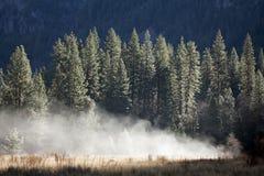 Brume de Yosemite photos libres de droits