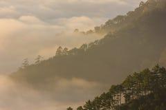 Brume et montagne de matin image stock