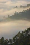 Brume et montagne de matin photographie stock