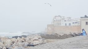 Brume froide Photographie stock