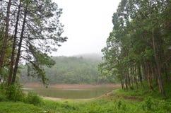 Brumeux et pleuvant dans le matin chez Pang Ung en Mae Hong Son Photo stock