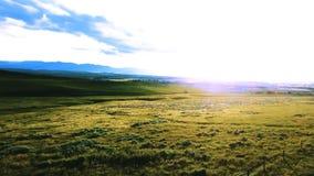 Brummen, das über ausgezeichneten ruhigen Wiesen, grüne einfache Graslandlandschaft mit erstaunlichem blauem sonnigem Himmel nach stock video footage