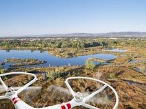 Brummen, das über Seen und Sumpf fliegt Stockbild
