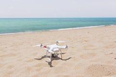 Brummen, das auf einem sandigen, hellen Strand im sunshÃne steht lizenzfreie stockfotografie