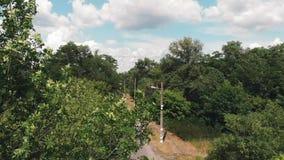 Brummen fängt an, in grünen Stadtpark zu fliegen Brummen geschossen vom Stadtpark mit grünen Bäumen Vogelperspektive der Natur Gr stock video