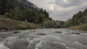 Brummen fliegt über einen Fluss mit einer starken Strömung mitten in den Bergen und den grünen Bäumen stock video