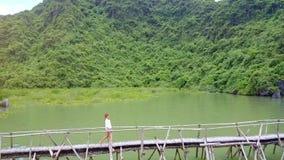 Brummen folgt dem Mädchen, das entlang Brücke über Meer in langer Bucht ha geht stock video footage
