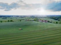 Brummen geschossen vom landwirtschaftlichen Feld im Sonnenuntergang - Bayern - Deutschland lizenzfreie stockfotografie