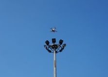 Brummen im Flug gegen einen blauen Himmel Lizenzfreie Stockfotos