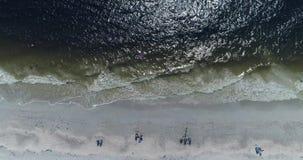Brummen: Am Strand stock video