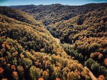 Brummenansicht des erstaunlichen bunten Herbstfallwaldes bei Sonnenuntergang Lizenzfreie Stockbilder