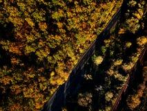 Brummenansicht des erstaunlichen bunten Herbstfallwaldes bei Sonnenuntergang Lizenzfreie Stockfotos