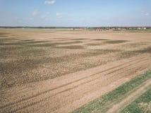 Brummenbild Vogelperspektive der nassen bebauten Landwirtschaft fängt Ne auf Stockbilder
