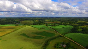 Brummenflug über dem Ackerland stock video