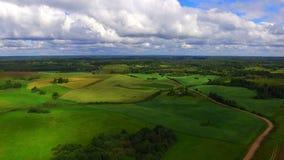 Brummenflug über dem Ackerland stock footage