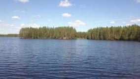 Brummenflug über einem schwedischen See stock video