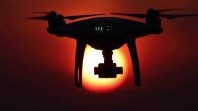 Brummenschattenbild, orange Sonnenuntergang, 50 fps, vier Videoszenen stock footage