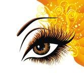 brun ögonillustrationvektor Royaltyfri Foto