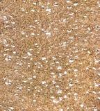 Brun bakgrund för texturkorkbräde royaltyfri bild