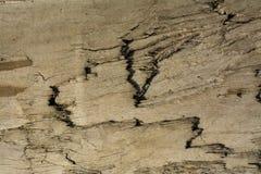 Brun bakgrundstextur av trä arkivbilder