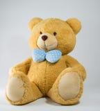 Brun björn 1 Royaltyfri Bild