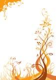 brun blom- orange för bakgrund royaltyfri illustrationer