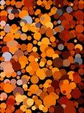 Brun bubblabakgrund Arkivbild
