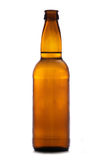 brun cider för flaska royaltyfri fotografi
