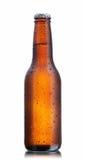 brun de bouteille à bière images stock