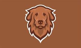 Brun de vecteur de logo de tête de chien unique Photo libre de droits