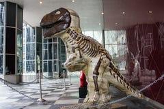 Brun dinosaurie Arkivfoto