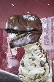 Brun dinosaurieprofil Royaltyfri Fotografi