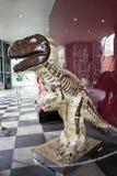 Brun dinosauriestående Arkivfoto