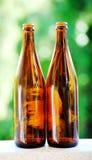 Brun flaska Royaltyfri Foto
