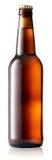Brun flaska av öl Royaltyfria Foton
